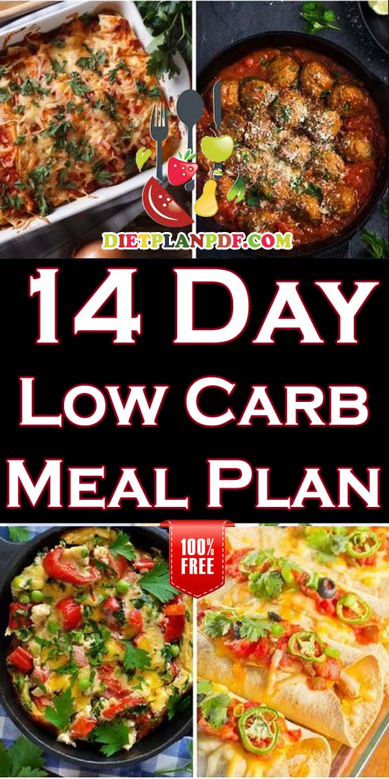 Free 14 Day (2 Week) Low Carb Diet Weight Loss Meal Plan ...